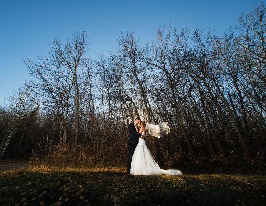 vermillion wedding, fall wedding, alberta wedding photographer