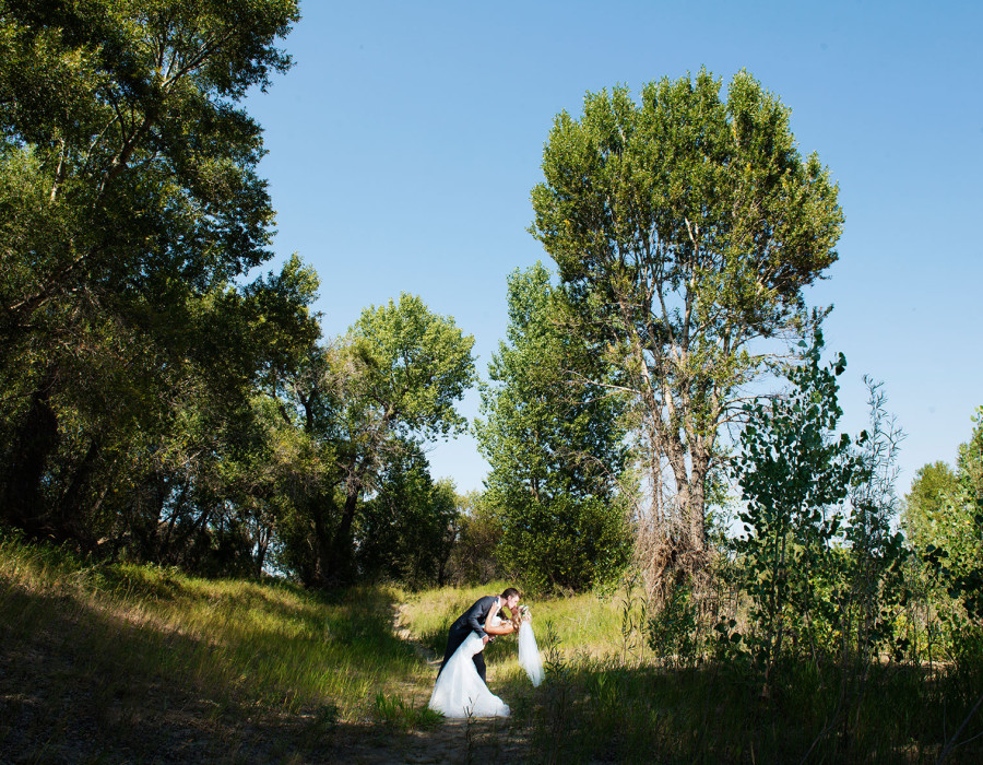Lethbridge Wedding Photographer, Pavan Park, summer wedding, RedTree Photography